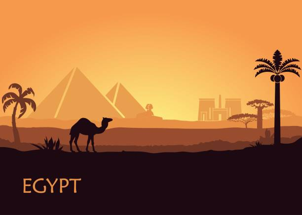 Camel in wild Africa pyramids landscape background illustration Camel in wild Africa pyramids and Luxor temple landscape background illustration egypt stock illustrations