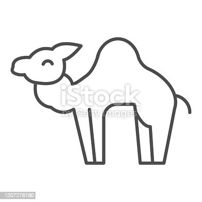 istock Camel thin line icon. Desert caravan animal silhouette. Animals vector design concept, outline style pictogram on white background, use for web and app. Eps 10. 1207276180