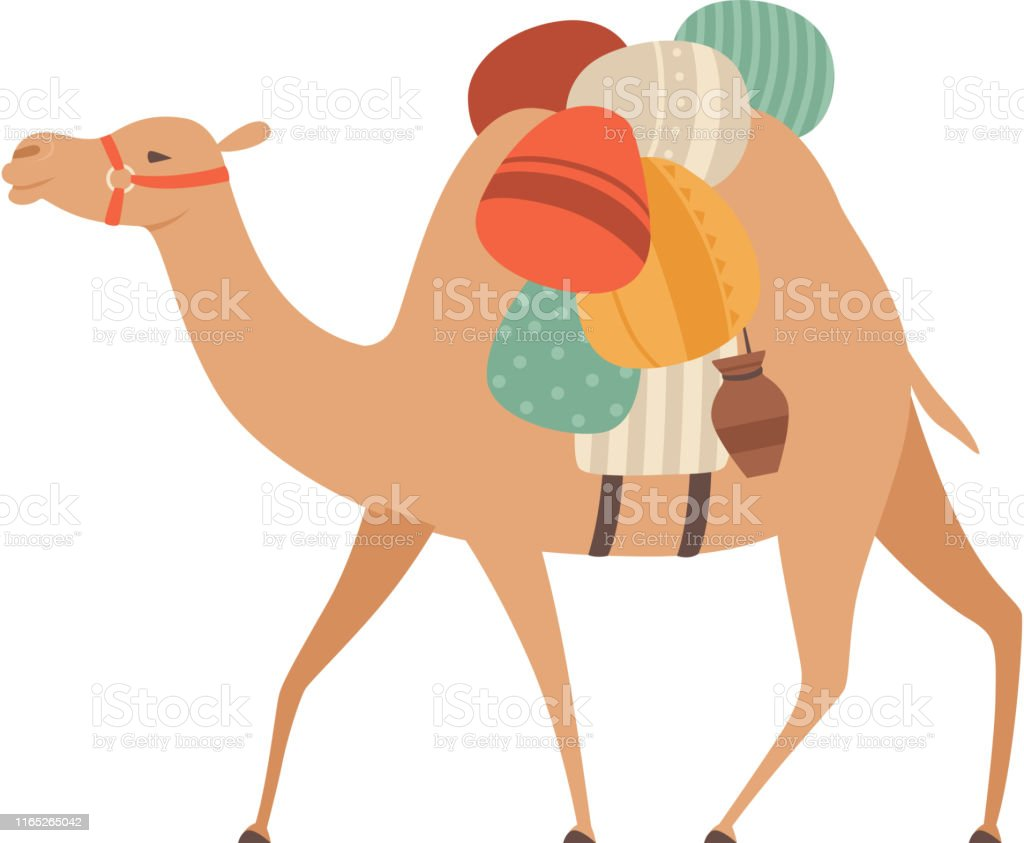 Camel with Bridle and Saddle, Desert Animal Carrying Heavy Load, Side...