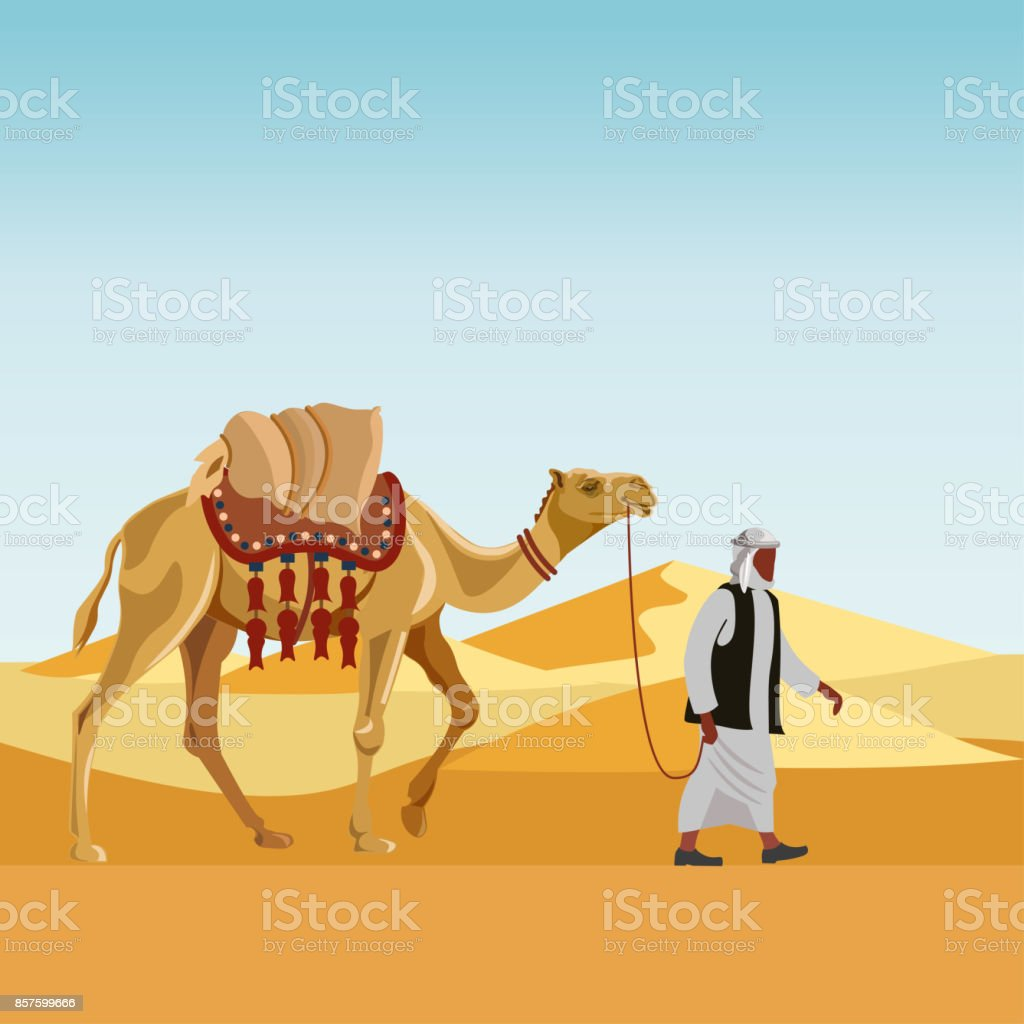 Cameleer with camel vector art illustration