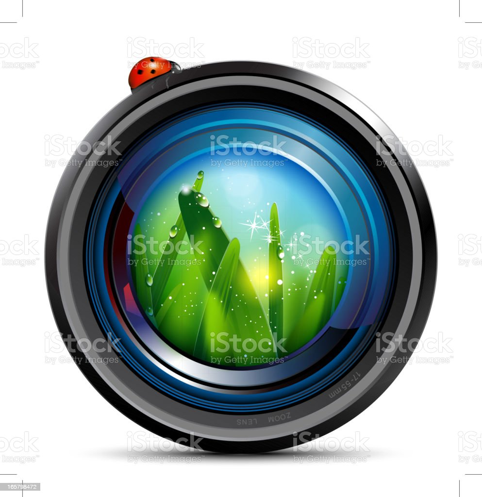 Camera Lens and ladybag vector art illustration