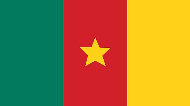kamerunische flagge für unabhängigkeitstag und infografik vektor illustr - kamerun stock-grafiken, -clipart, -cartoons und -symbole