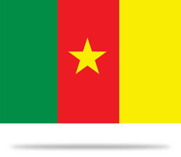 kamerun flagge mit schatten - kamerun stock-grafiken, -clipart, -cartoons und -symbole