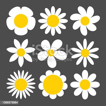 Camomile icon set on grey background.Vector.