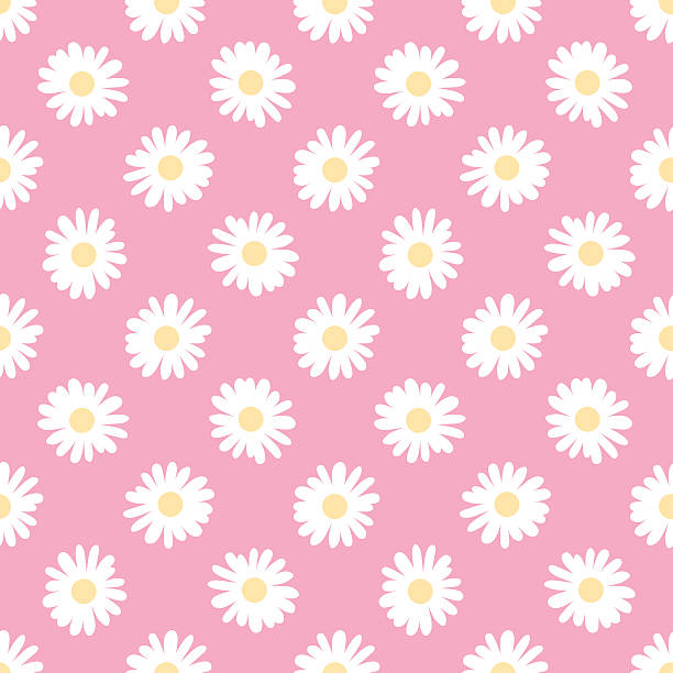 Camomile Doodle camomile. Seamless vector wallpaper daisy stock illustrations