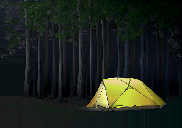 Camp At Night In The Forest Vector Art Illustration