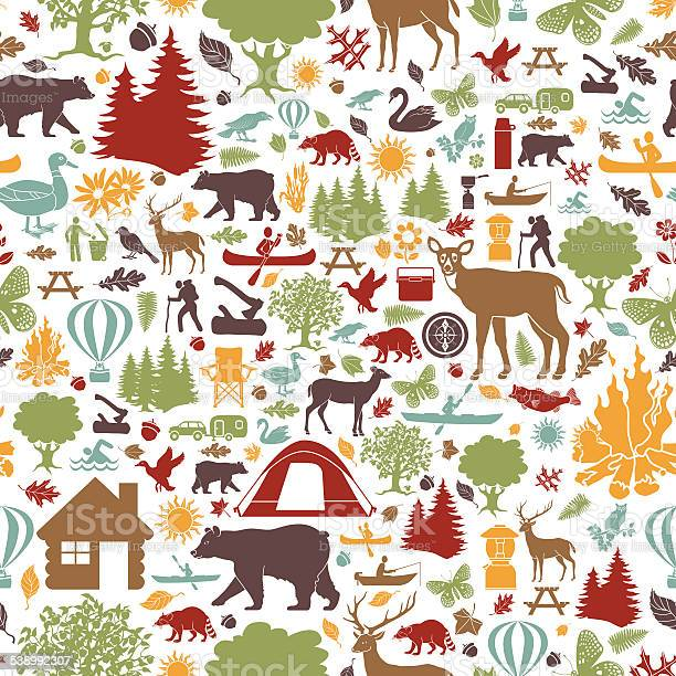Camping and outdoor recreation seamless tiling pattern vector id538992307?b=1&k=6&m=538992307&s=612x612&h=64jeweopxukkgdnezczndr7icnqomaw8qpwozymi fi=