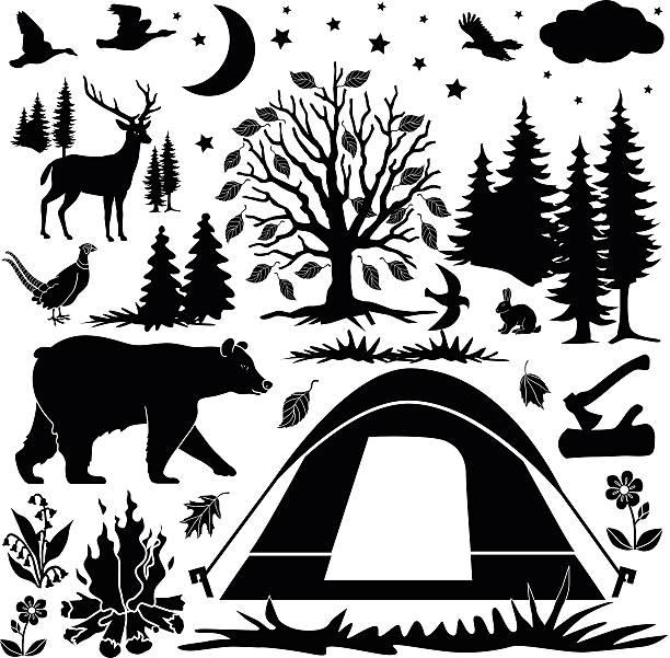 キャンプデザイン要素 - 野生動物旅行点のイラスト素材/クリップアート素材/マンガ素材/アイコン素材
