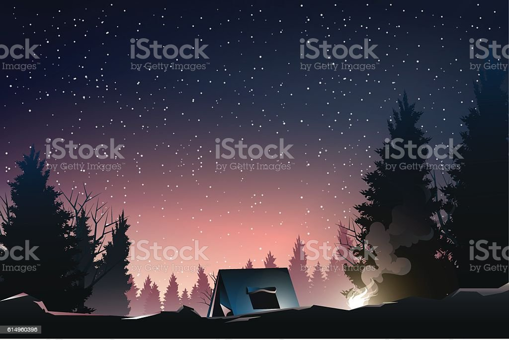 camping in pine wood when dusk vector art illustration