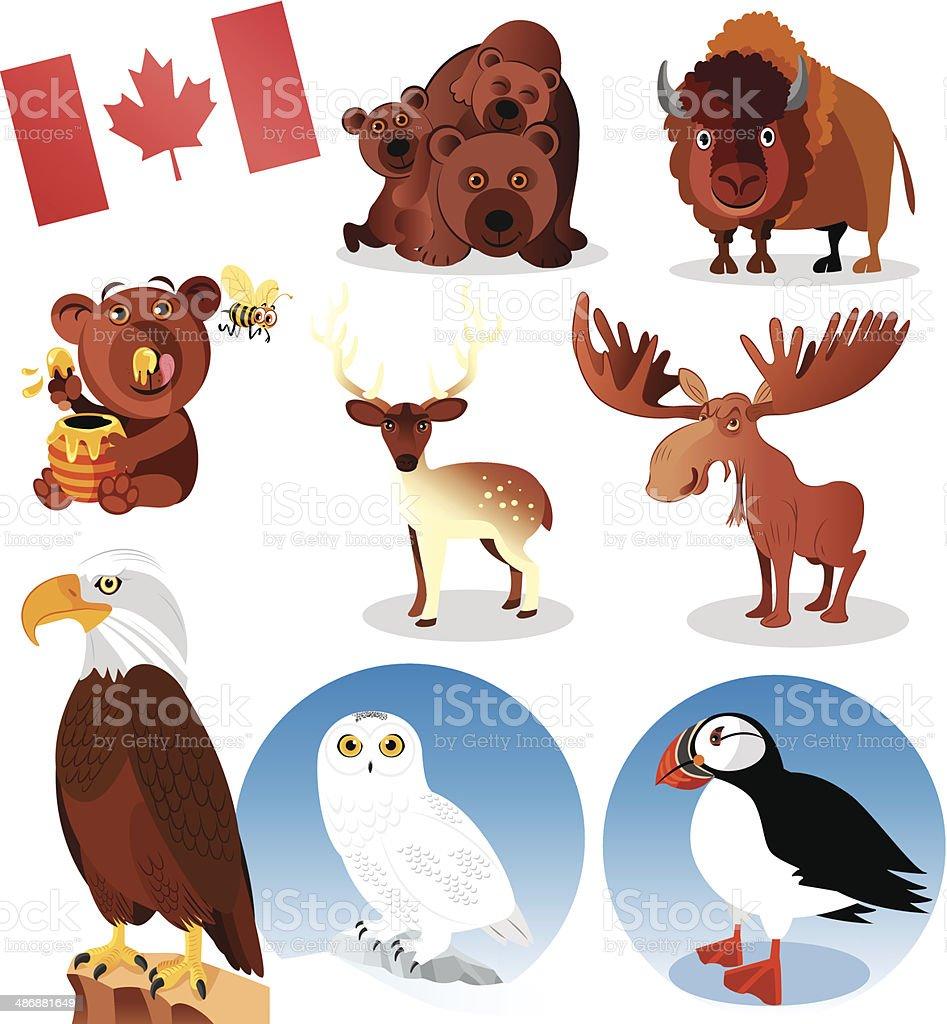 Canada Animals vector art illustration