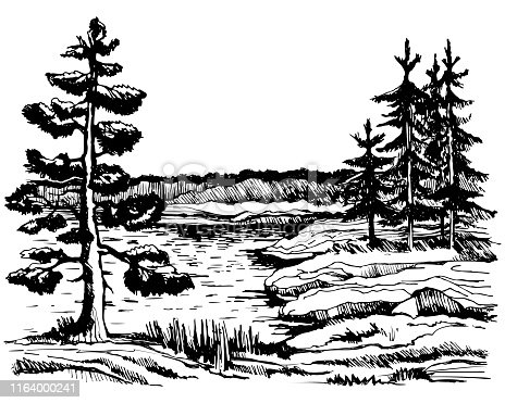 Landscape sketch Canada background view of beautiful landscape, islands and spruce forest, sketch hand drawn ink shading graphics vector illustration