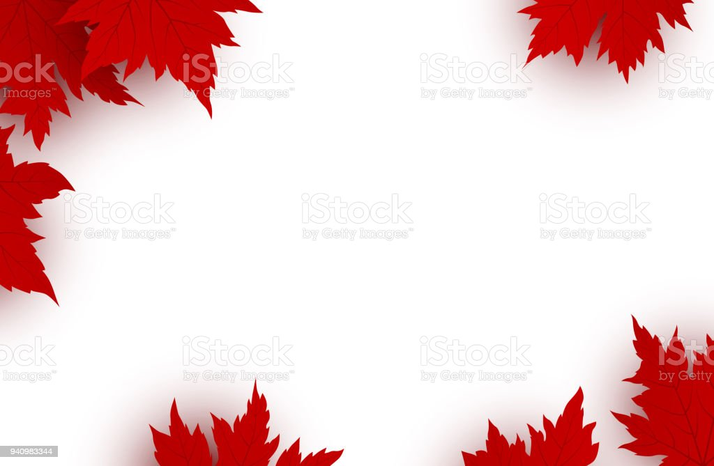 Canada Day Background Design Of Red Maple Leaves Isolated On White Background With Copy Space Vector Illustration Stock Illustration Download Image