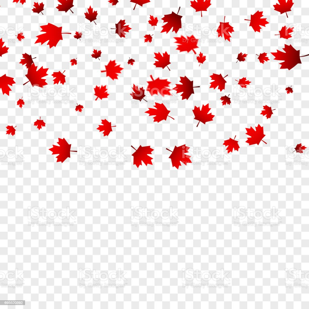 Canada Day maple leaves background. Falling red leaves for Canada Day 1st July vector art illustration