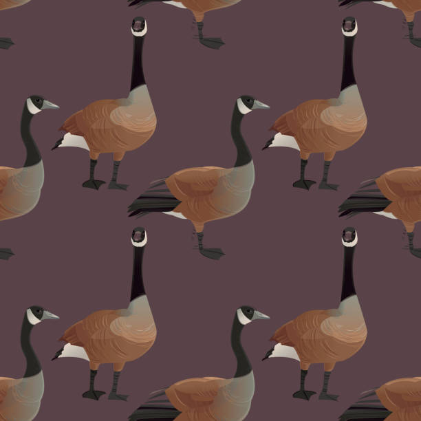 Canada Geese Seamless Pattern vector art illustration
