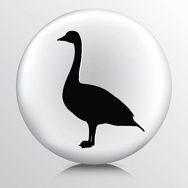 Canada Goose Icon On Grey Base Canada Goose Icon On Grey Base canada goose stock illustrations