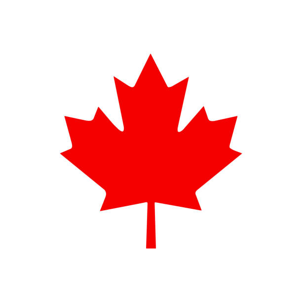 Canada leaf Canada leaf. Vector Illustration canada stock illustrations