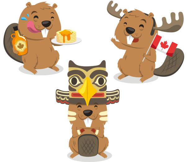 Canadian Beaver Holding Canada Flag Canadian Beaver Holding Canada Flag, vector illustration cartoon. With beaver holding pancake, maple syrup, totem hat. maple syrup stock illustrations