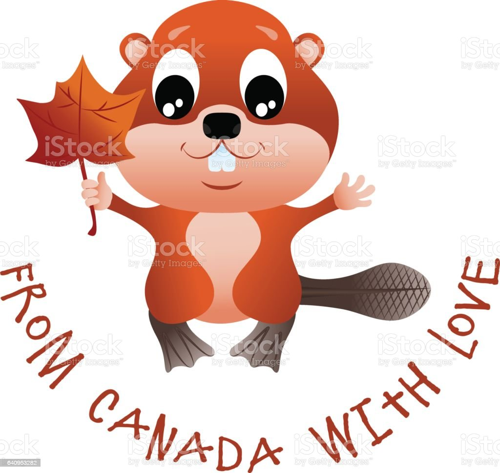 Canadian Beaver Stock Vector Art & More Images of Animal 640953282 ...
