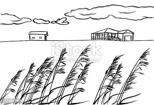 Prairie farm house sketch with grass in the foreground