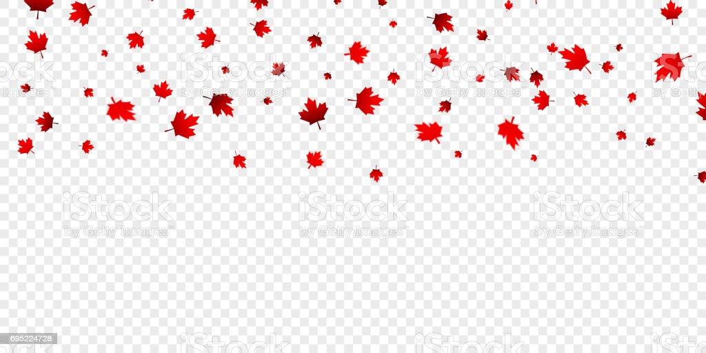 Canadian Maple Leaves Background Falling Red Leaves For ...