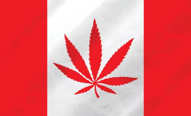 kanadische marihuana flagge - flagge kanada stock-grafiken, -clipart, -cartoons und -symbole