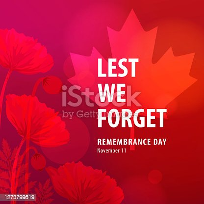 istock Canadian Remembrance Day Ceremonies 1273799519
