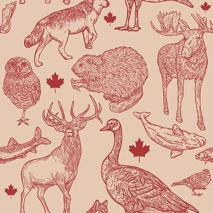Canadiana Wildlife Seamless Pattern