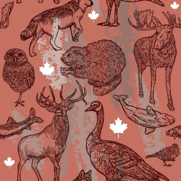 Canadiana Wildlife Seamless Pattern Super Canadian wildlife seamless pattern! Full of animals that are symbolic to Canada. Global colours, easy to edit, a great seamless tile for fabric, backgrounds, whatever! canada goose stock illustrations