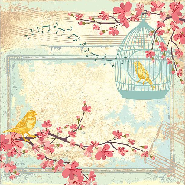 illustrations, cliparts, dessins animés et icônes de jaune canari sparrows et cerisiers en fleurs aux couleurs pastel fond album de coupures - dessin cage a oiseaux