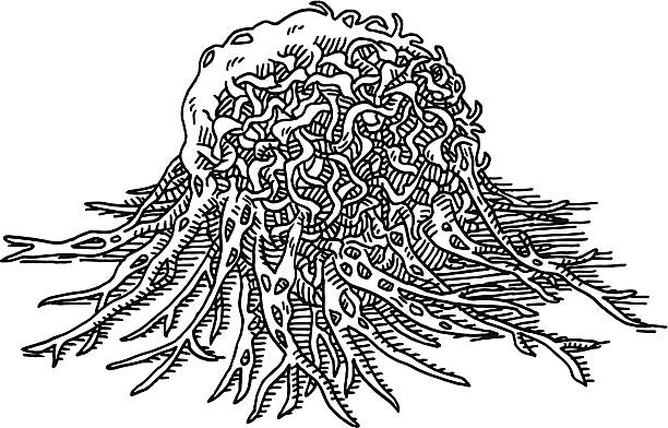 Cancer Cell Tumor Macro Drawing Hand-drawn vector drawing of a Cancer Cell Tumor, Macro. Black-and-White sketch on a transparent background (.eps-file). Included files are EPS (v10) and Hi-Res JPG. extreme close up stock illustrations