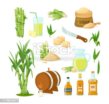 Cane sugar with stem and leaf plants. Fresh squeezed sugarcane in glass with stalks, cubes, glass bottles of rum, bamboo, rum alcoholic liquid. Natural organic product food vector cartoon illustration