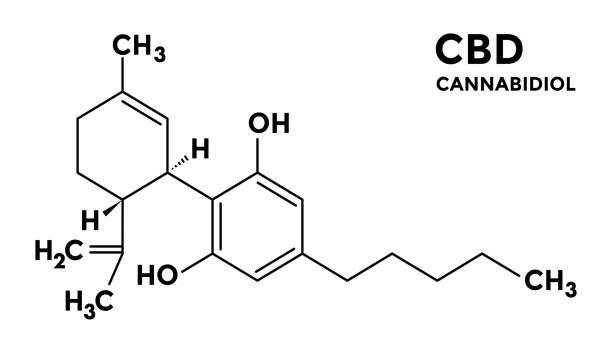 stockillustraties, clipart, cartoons en iconen met cannabidiol - cbd - structurele sceletal formule. - fysieke structuur