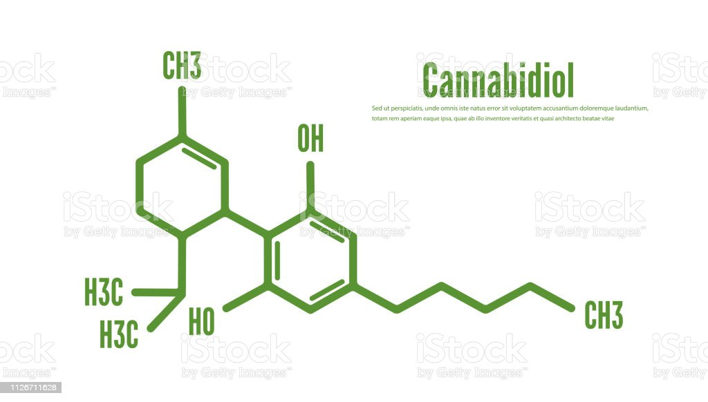 Cannabidiol or CBD molecular structural vector royalty-free cannabidiol or cbd molecular structural vector stock illustration - download image now