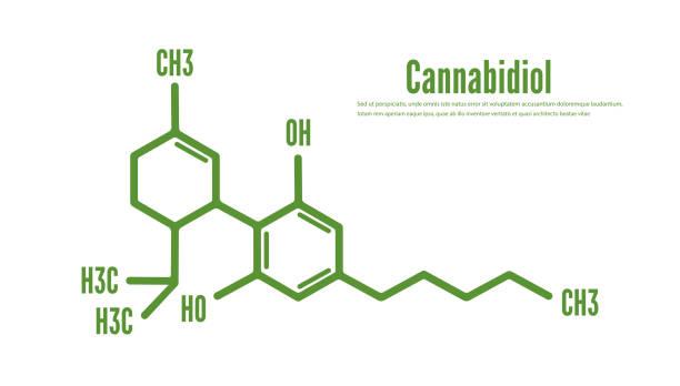Cannabidiol or CBD molecular structural vector Cannabidiol or CBD molecular structural vector molecule stock illustrations