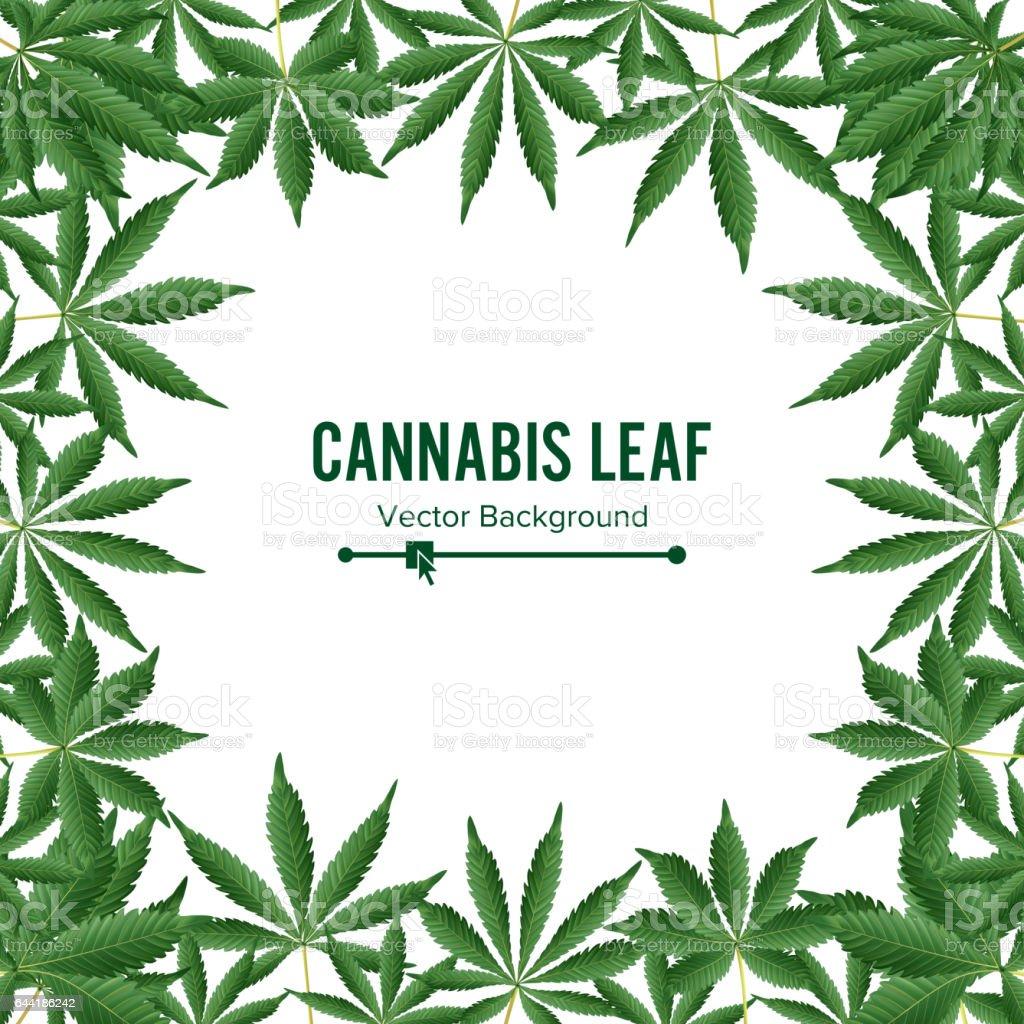 how to make hash from marijuana leaves