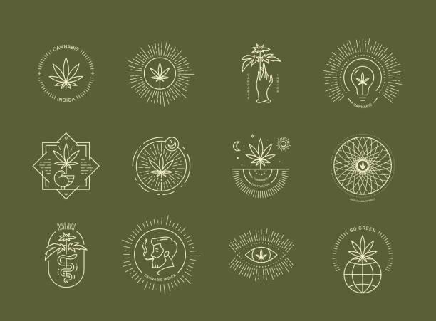 ilustraciones, imágenes clip art, dibujos animados e iconos de stock de emblema de cannabis en fondo verde - medicina alternativa