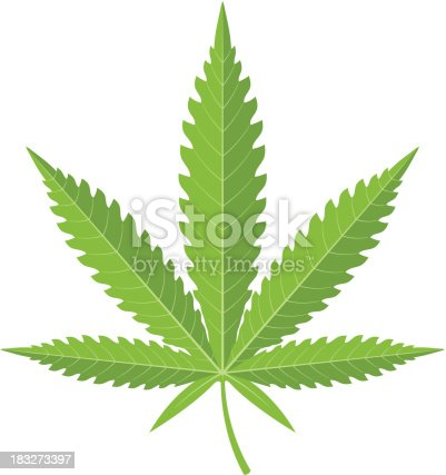 A cannabis leaf. The image has 3 layers, the outer shape, the leaf shadows and the leaf ribs. By removing the shadow layer a flatter style image can be used, or the basic shape without shadow or ribs gives a good silhouette.