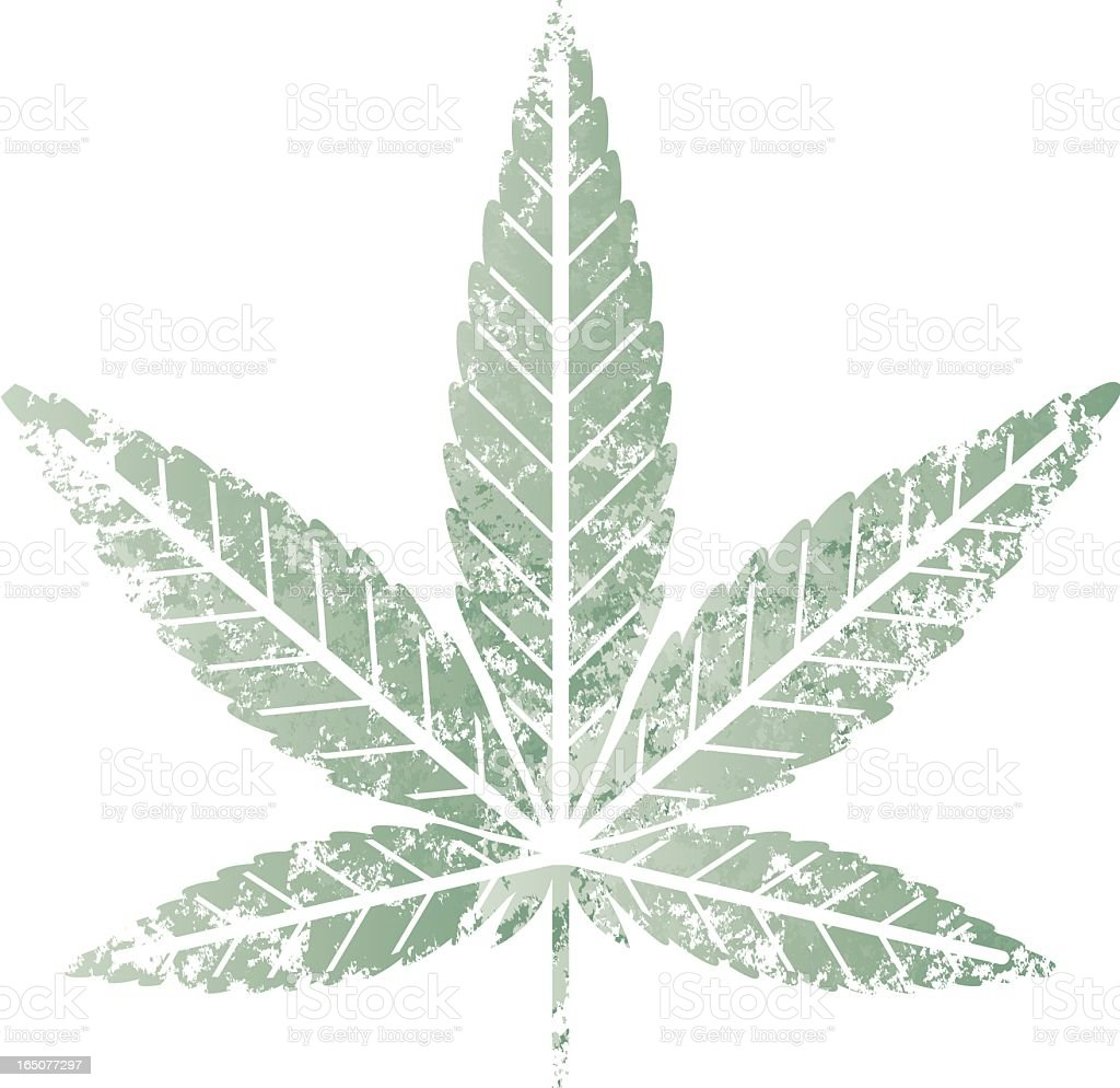 cannabis leaf stencil royalty free stock vector art