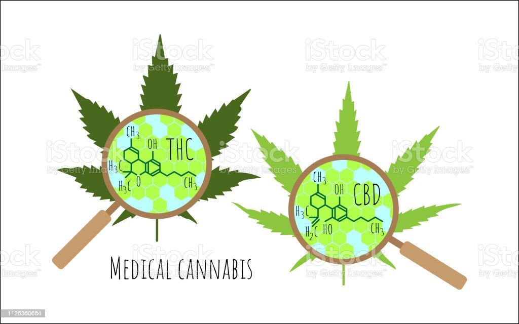 Cannabis Lässt Sich Durch Eine Lupe Strukturelle Chemische