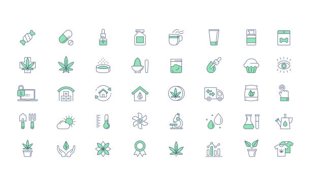 Cannabis Products, Growing Vector icon set Cannabis CBD Medical products and Growing, planting line vector icon set natural condition stock illustrations