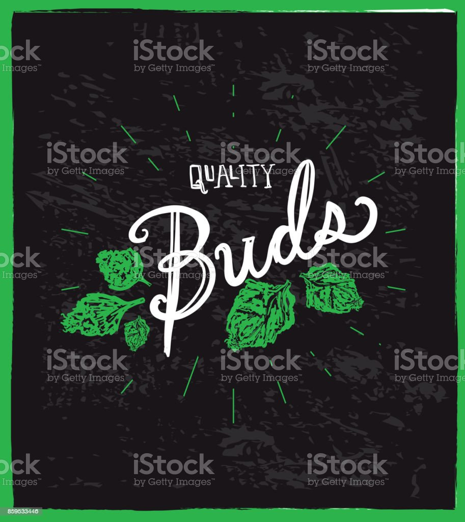 Cannabis weed culture quality buds hand drawn labels designs vector art illustration