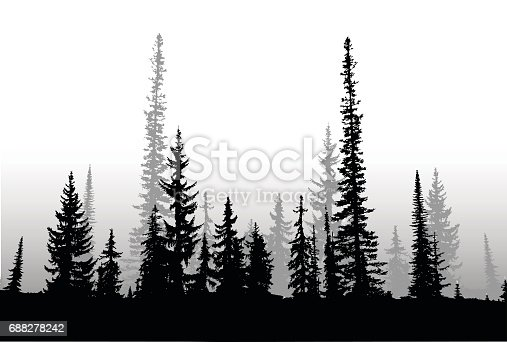 Silhouette vector illustration of a treeline make of nothern pine trees