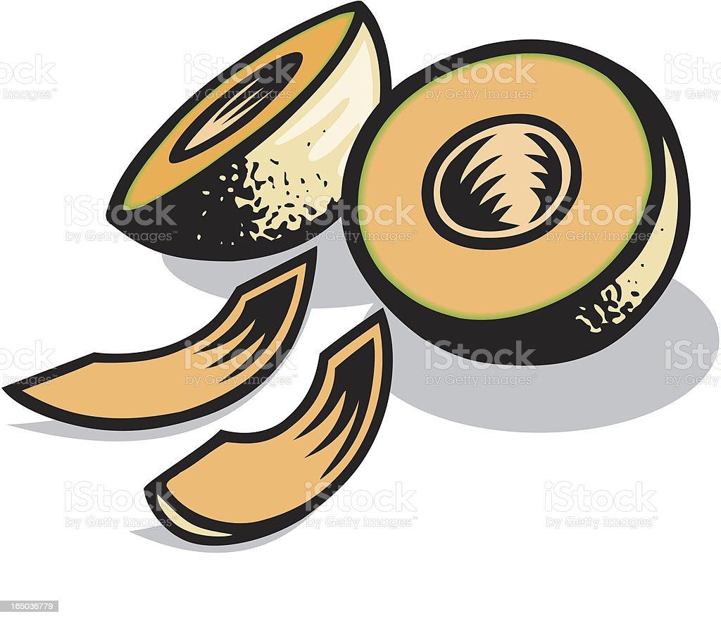 Cantaloupe Melon royalty-free stock vector art