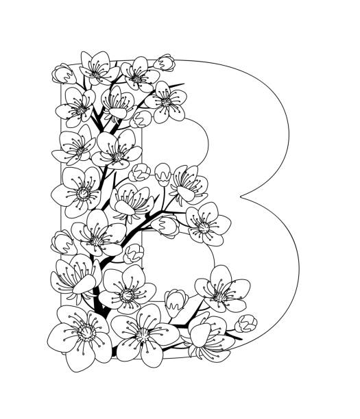 Capital letter B patterned with contour drawn sakura twig Capital letter B patterned with contour hand drawn doodle blossom cherry isolated on the white background. Monochrome page anti stress adult coloring book. Vector illustration floral letters English language alphabet. EPS 10 coloring book pages templates stock illustrations