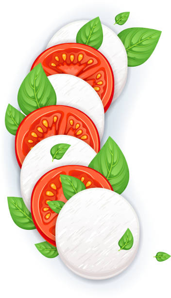 Caprese salad vector - mozzarella, tomato and basil leaves. Caprese salad vector background with copy space - mozzarella, tomato and basil leaves. Italian food illustration. mozzarella stock illustrations