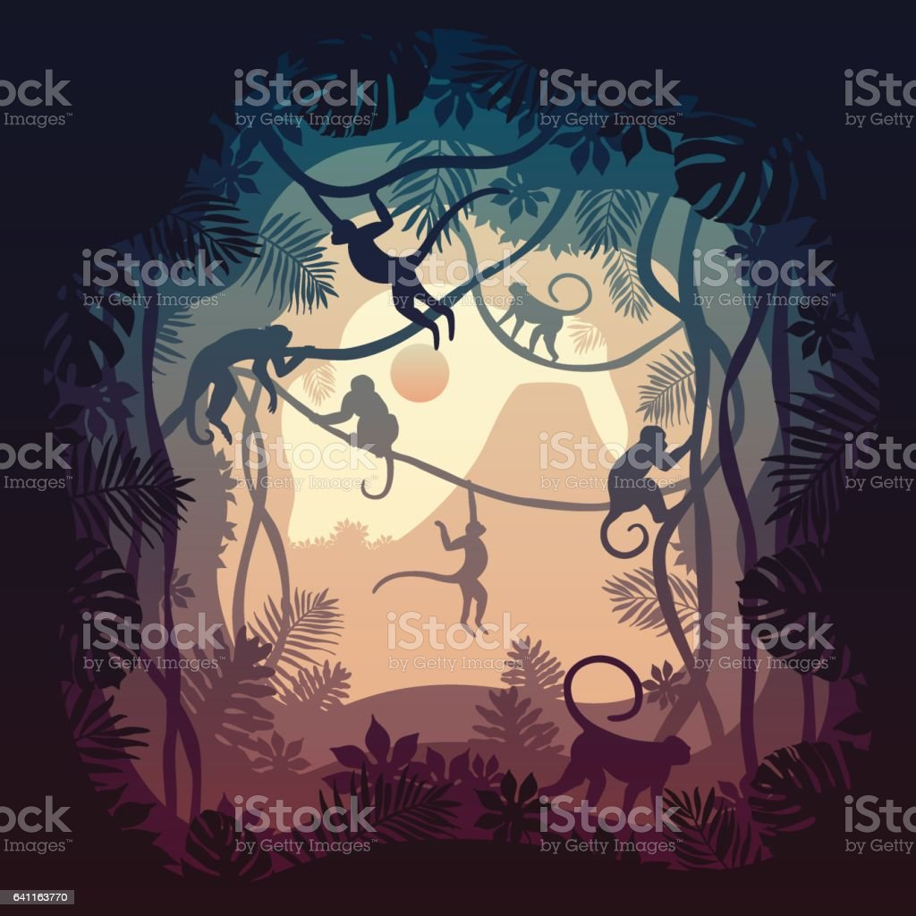Capuchin Land vector art illustration