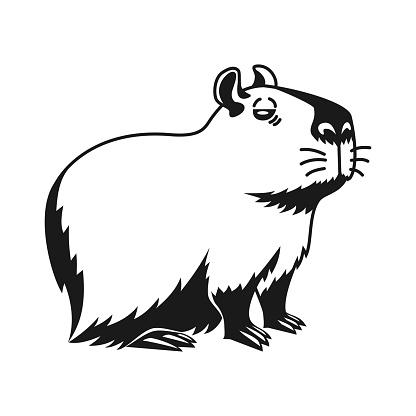 Capybara hand drawn isolated on white background.