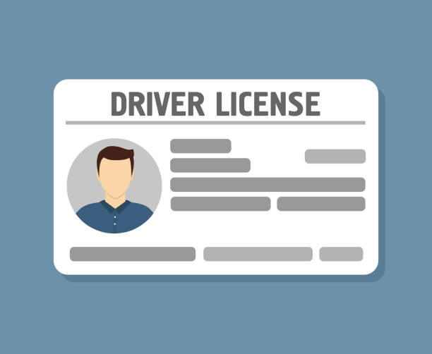 Voiture pilote licence identification avec photo - Illustration vectorielle