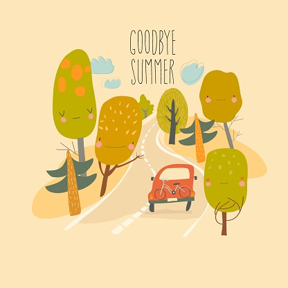 Car is driving on the road through summer forest