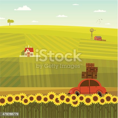 Car with luggage driving in the field